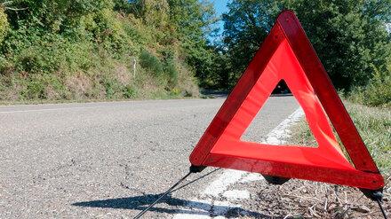 В ДТП с грузовиком и Mercedes под Воронежем пострадали 8-летняя девочка и пенсионерка