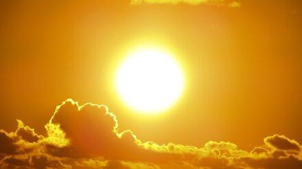 Воронежцам рассказали, как избежать солнечного и теплового ударов в жару