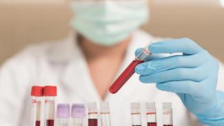 Воронежцам предложили бесплатно сдать кровь и провериться на рак груди