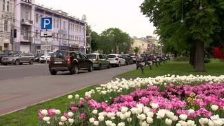 Воронежцы заплатили 40 млн рублей штрафов за игнорирование платных парковок