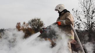Спасатели сообщили о двух новых пожарах в Воронежской области