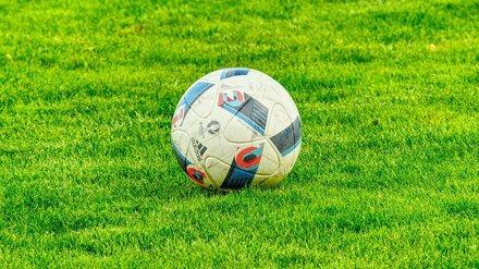 Воронежский «Факел» во второй раз проиграл в сезоне