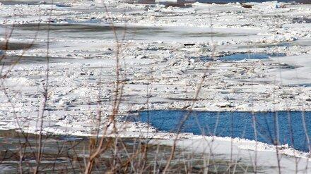 В Воронежской области уплывший понтонный мост отрезал от мира два села
