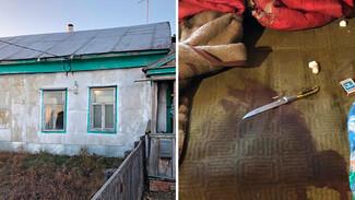 Жительница Воронежской области зарезала экс-возлюбленного за оскорбления и пьянство