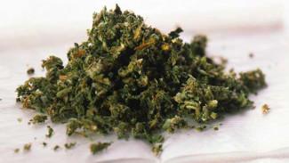В Воронежской области торговца наркотиками отправили в тюрьму на 12,5 лет