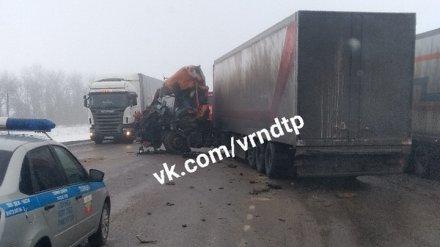 В Воронежской области при столкновении трёх грузовиков погиб пожилой мужчина