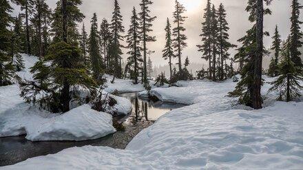 Трое детей провалились под лёд в Воронежской области