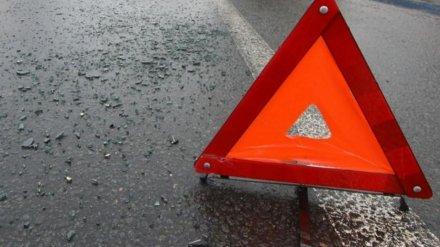 В Воронеже в аварии у БСМП №8 пострадали 2 человека