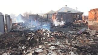 «Животных жалко». Пожар лишил многодетную семью из воронежского села дома и хозяйства