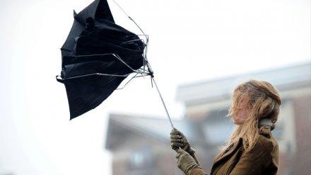 На Воронежскую область надвигаются сильные дожди и ветер