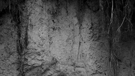 Под Воронежем пять человек погибли, провалившись в сливную яму