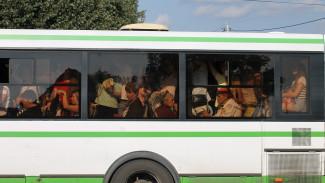 В Воронеже на Вербное воскресенье пустят специальные автобусы к кладбищам