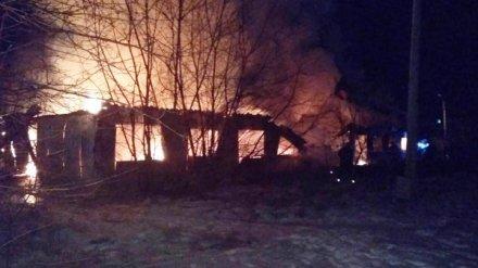 В Воронежской области на пожаре погибли трое сельчан