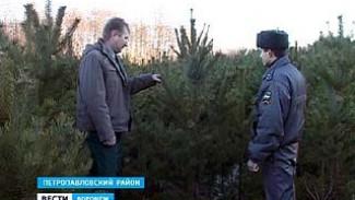 Специалисты вышли на охрану молодых сосен в Петропавловском районе