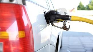 Воронеж вошёл в топ-3 городов ЦФО с самым дорогим бензином