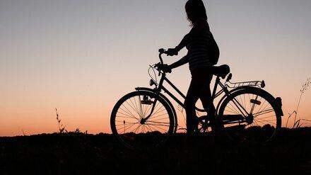 В Воронежской области серийный вор украл у собственной дочери велосипед BMW