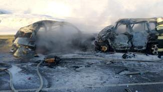 ДТП с 7 погибшими спровоцировало пробку в 9 км на трассе в Воронежской области