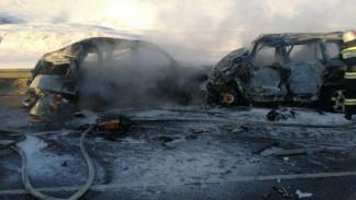 В ДТП с 8 сгоревшими мужчинами на трассе под Воронежем обвинили мертвеца