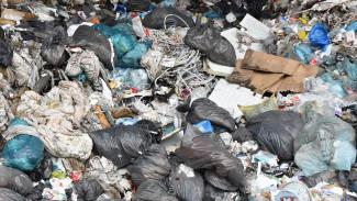 В Воронежской области уничтожат гигантскую незаконную свалку