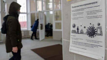 На поддержку бизнеса во время пандемии в Воронежской области направили 19,5 млрд рублей
