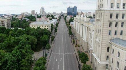 В Воронеже завершили отбор общественников для участия в обновлении проспекта Революции