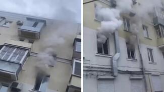 Воронежцы сообщили о массовой гибели животных на пожаре в пятиэтажке