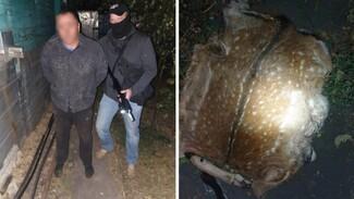 Под Воронежем задержали 2 мужчин с расчленённой ланью