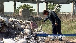На окраине села Трещевка Рамонского района обнаружено около 50 тонн химикатов