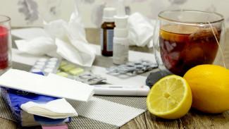 Заболеваемость гриппом в Воронежской области превысила эпидпорог на 30%