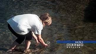 Воды реки Толучеевка продолжают проверять на энтеровирус