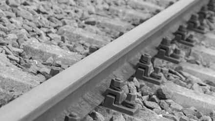 В Воронеже поезд сбил 19-летнего парня