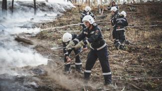Из-за несоблюдающих карантин воронежцев противопожарный режим в регионе введут досрочно