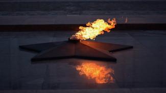 Под Воронежем подростки устроили прыжки через Вечный огонь
