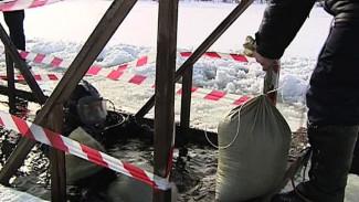 Спасатели призывают воронежцев в Крещенскую ночь купаться в оборудованных местах