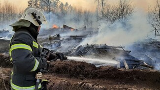 Из-за ландшафтного пожара вблизи воронежского микрорайона перекрыли дорогу
