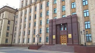 В TikTok появился аккаунт правительства Воронежской области