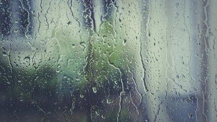Последняя неделя мая встретит воронежцев дождями и грозами