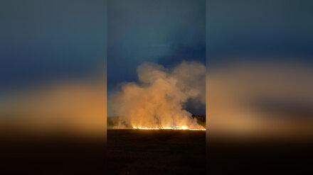 Воронежцы сообщили о загоревшемся из-за неудачного запуска салюта поле