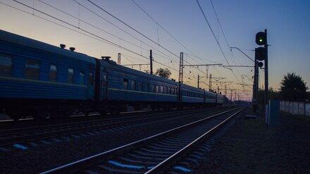 Пропавшую в Воронеже 11-летнюю девочку сняли с электрички в другом городе