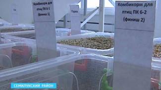 В Семилукском районе начал работу комбикормовый завод