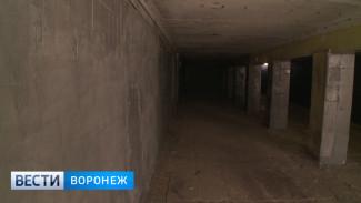 Реконструкцию четырёх подземных переходов в Воронеже оценили в 41 млн рублей