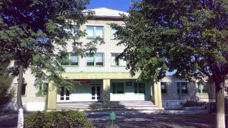 Директор школы из воронежского села ответит за смерть девочки, разбившую голову о фонтан