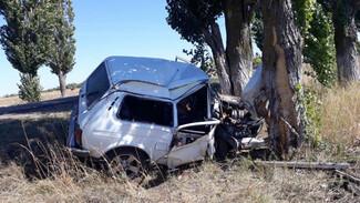 В Воронежской области «Нива» врезалась в дерево: водитель погиб