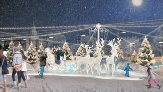 На площади Ленина в Воронеже на Новый год «Щелкунчика» сменит «Снежная королева»