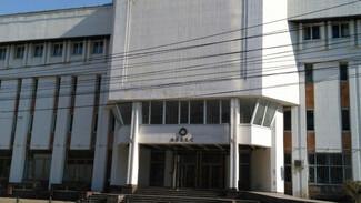 Центр «Апекс» в Воронеже может уйти с молотка за полцены