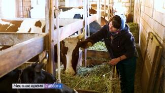 «Было страшно». Жительница Воронежа рассказала о создании сыроварни в деревне
