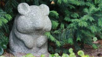 Последний путь хомячка или как хоронят домашних животных в Воронеже