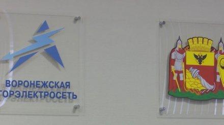 Против руководства «Воронежгорэлектросети» возбудили ещё одно уголовное дело