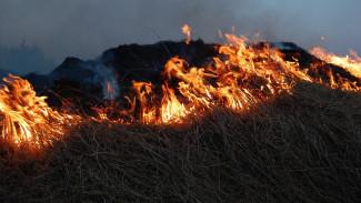 Под Воронежем пенсионерка сгорела в собственном дворе, когда жгла траву
