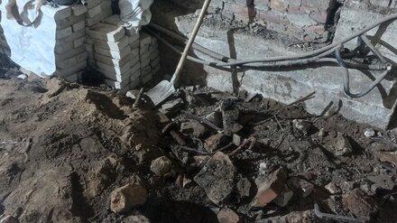 В Воронеже найденные на предприятии Роскосмоса кости оказались свиными